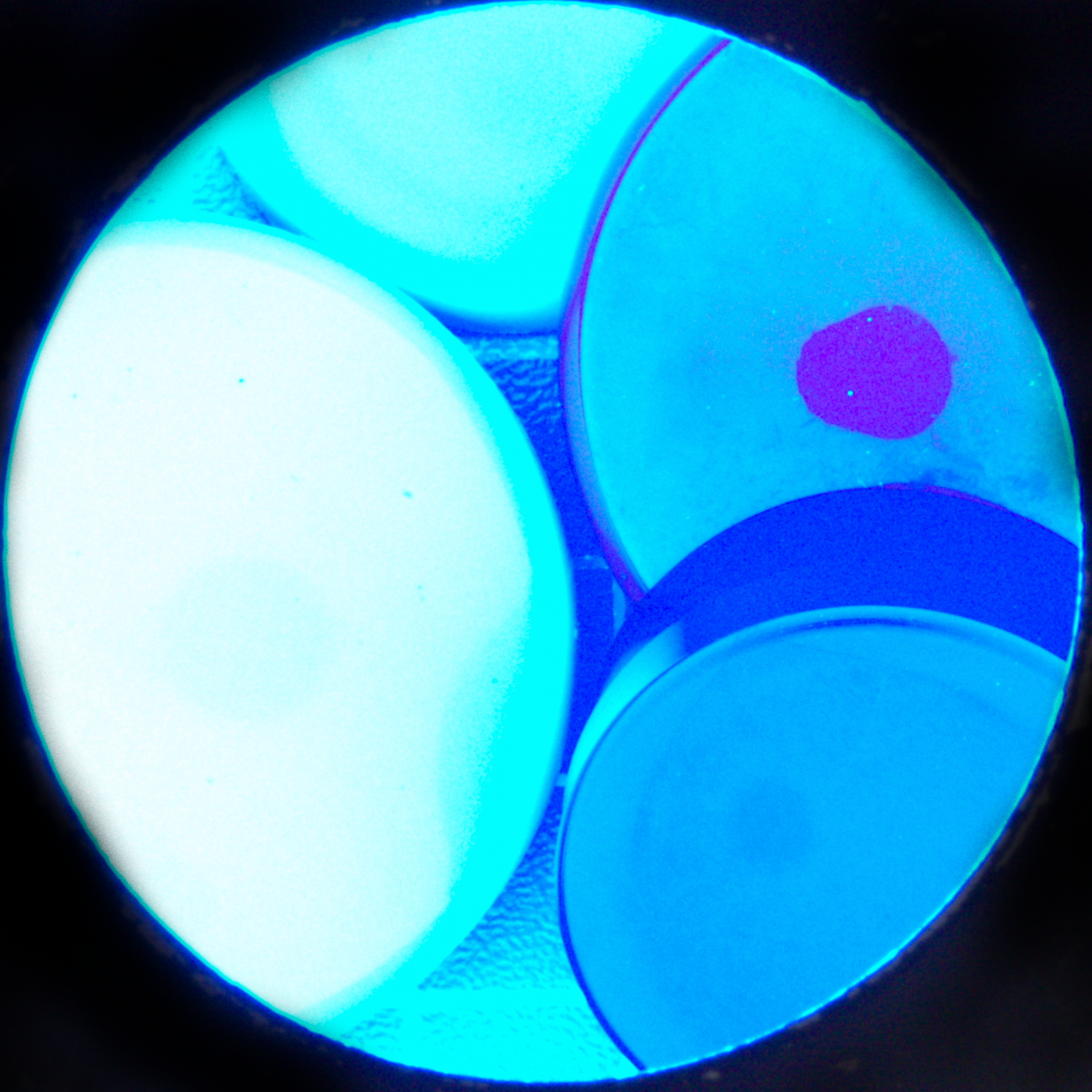 coloured-with-blue-light