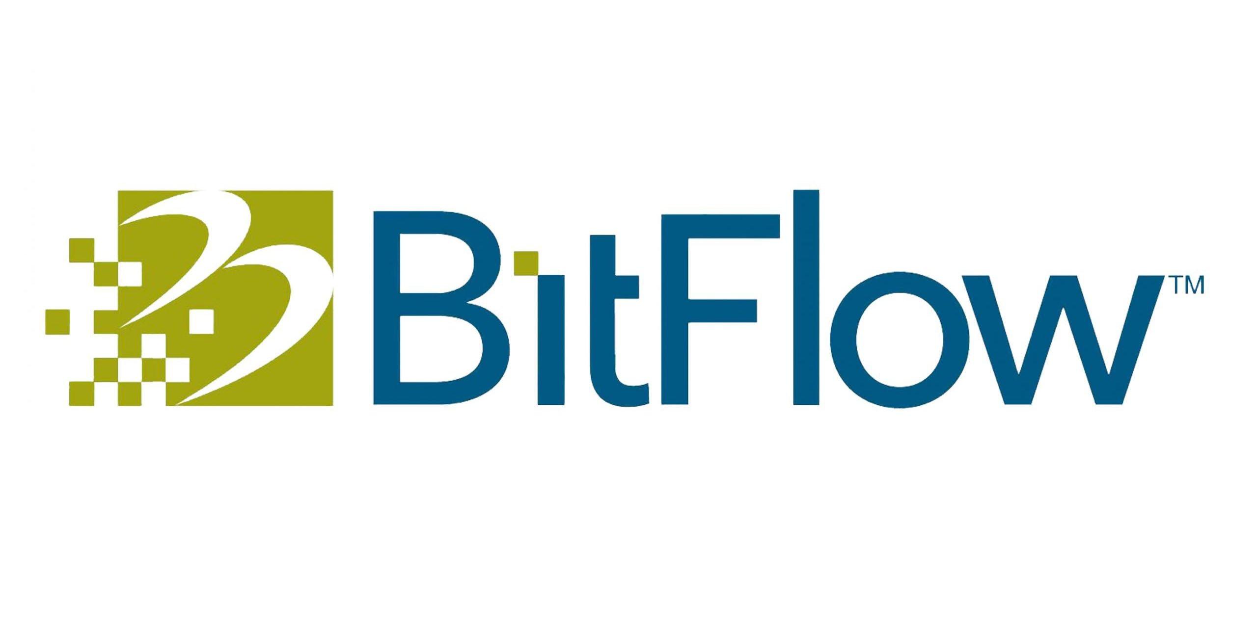 BitFlow Logo 2-1