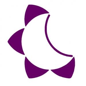 moonflower-purple